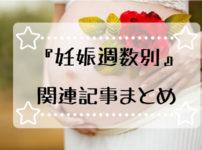 妊娠週数別の関連記事まとめ
